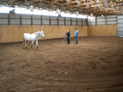 Learning how to lunge