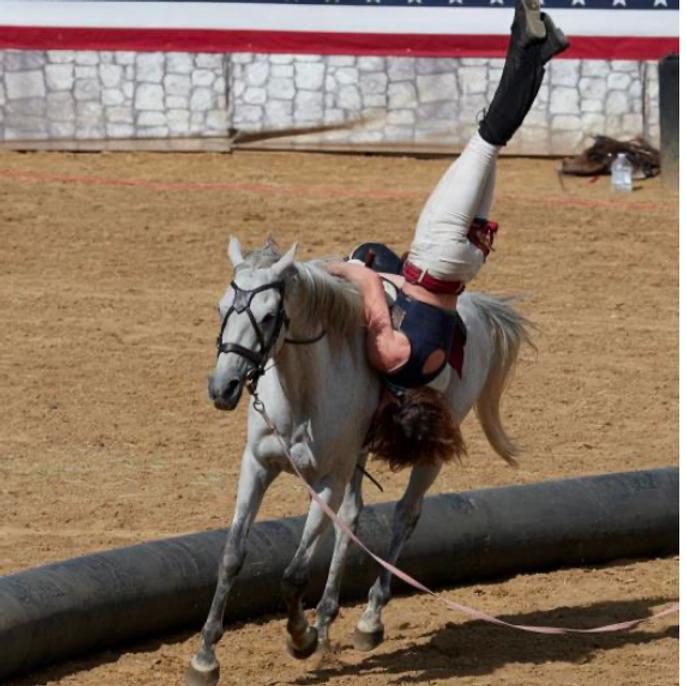 Trick Riding/Bareback Vaulting/Roman Riding