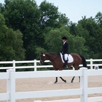 Showing Dressage