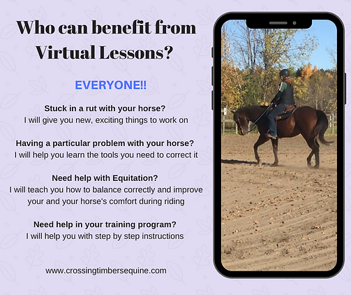 Who can benefit from Virtual Lessons?.pn