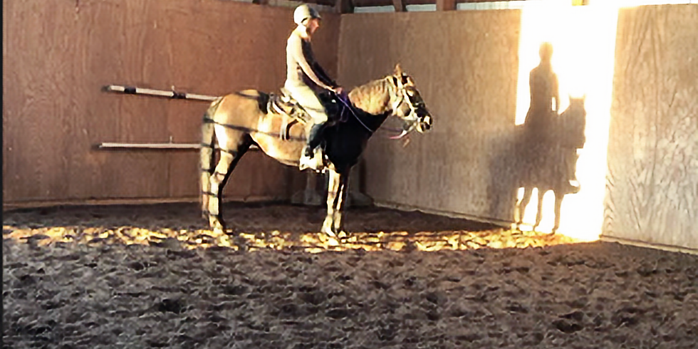 Horsemanship & Problem Solving June