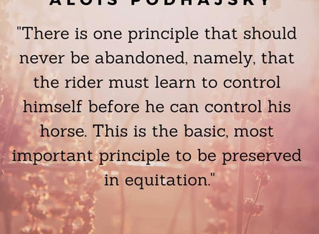 Equitation - The Knee to the Seat