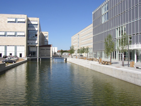 Seminar about Copenhagen University Student Internship at DCCJ