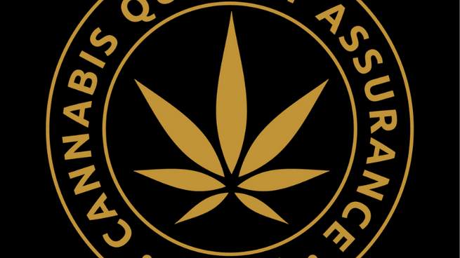 Shining a Spotlight on Cannabis Quality at Vancouver's Lift & Co. Conference