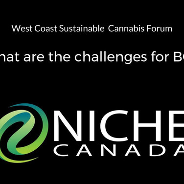 What are the challenges for BC?