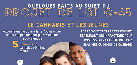 French Cannabis and Youth for instagram.