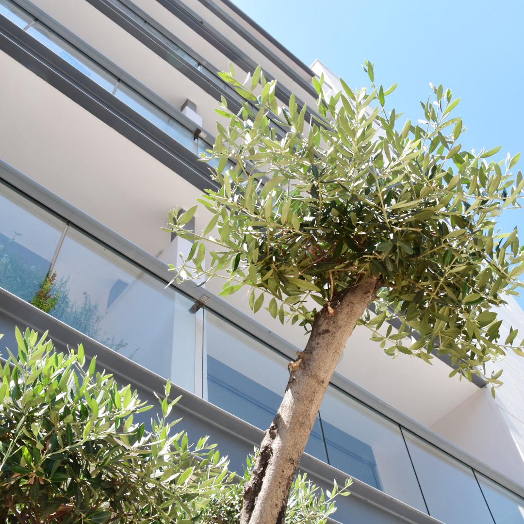 בניין משותף - חברת ניהול