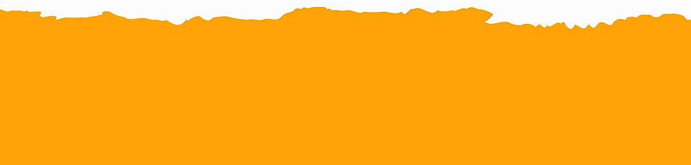 orangebanner_edited.jpg