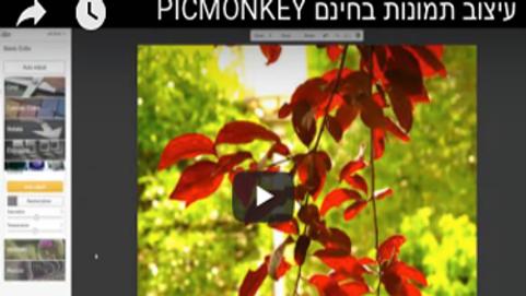 עריכת תמונות - picmonkey