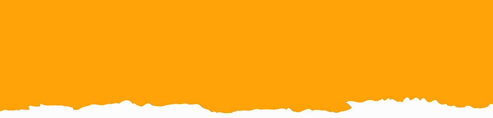 orangebanner.jpg