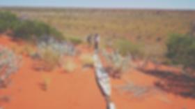 Australia, 2017