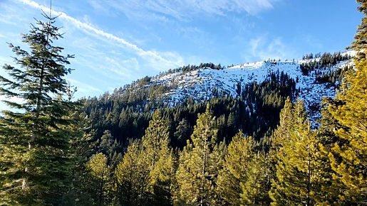 Lake Tahoe documentary filmmaking films