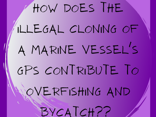 GPS cloning contributes to overfishing