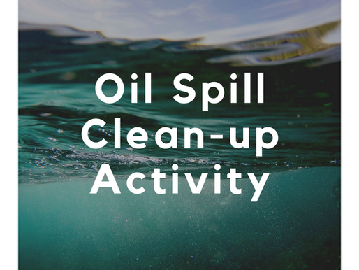 Oil Spill Clean-Up Activity