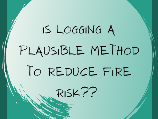 Logging and mechanical thinning used to reduce fire risk