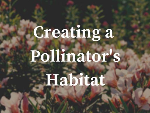 Creating a Pollinator's Habitat