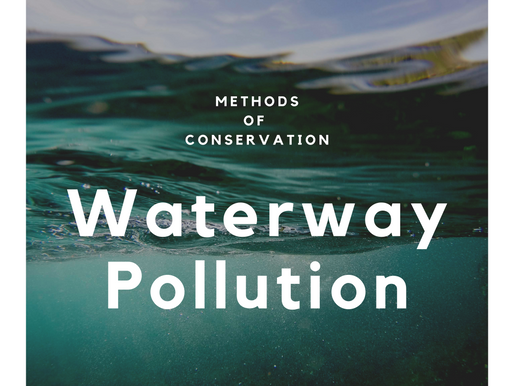 Methods of Conservation: Waterway Pollution