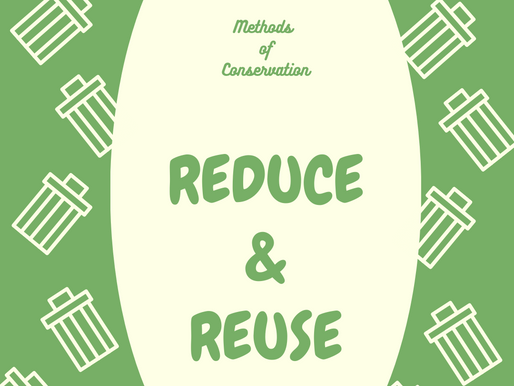 Methods of Conservation: Reduce and Reuse
