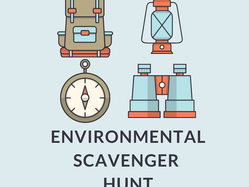 Environmental Scavenger Hunt