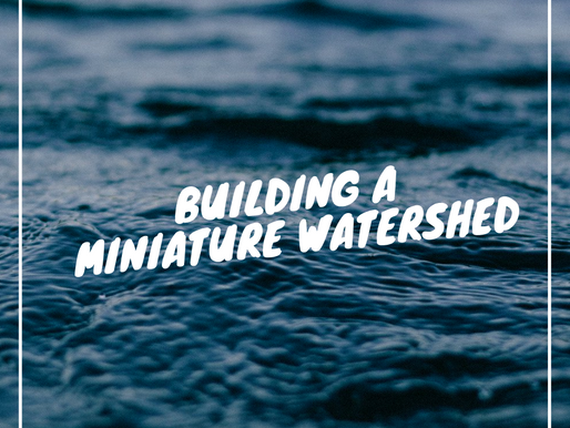 Building a Miniature Watershed