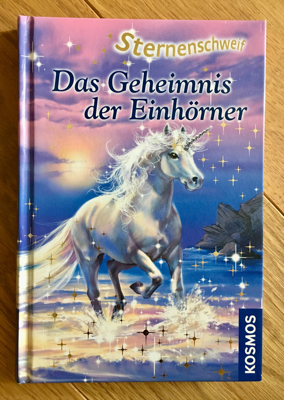 The Secret of the Unicorns: Chapter 1