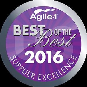 Agile-1_2016_SES+AWARD+PLATINUM_150.png