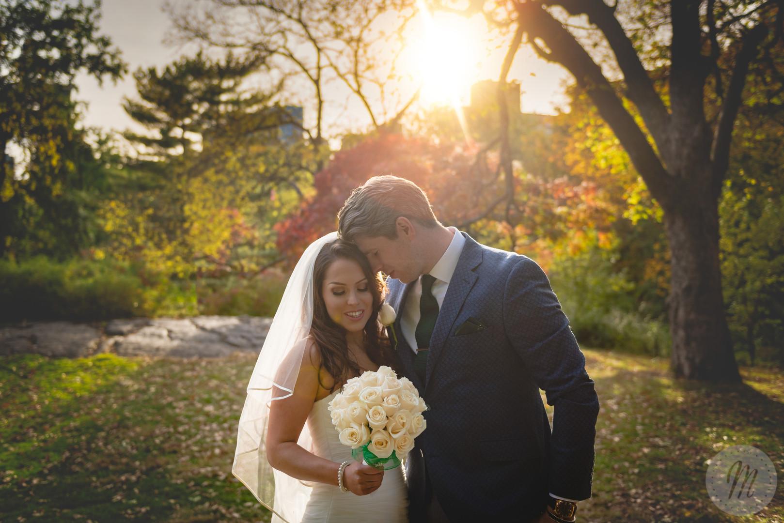 Sunshine flare autum park bride and grrom