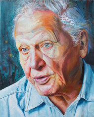 David Attenborough - Oil on canvas