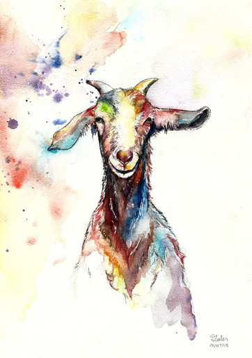 William the Billie Goat - Watercolour and Pen