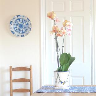 Sunlit Westchester Home - dining room