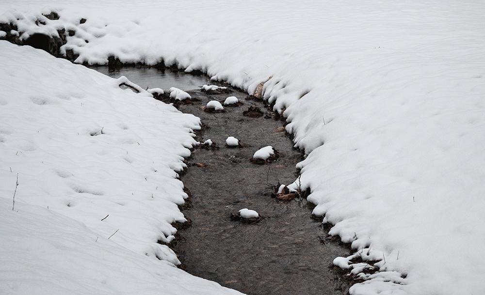 LittleRiver_Winter_Series_4_IMG_9485