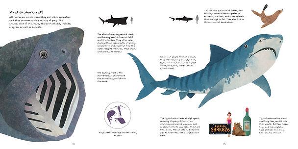 Sharks_diet.JPG