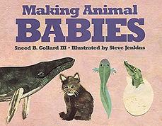 animal babies.jpg