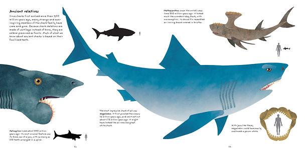 Sharks_prehistoric.JPG