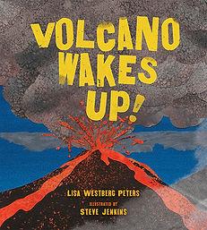 volcano wakes up.JPG