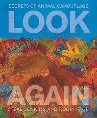 look again_cov opt.JPG