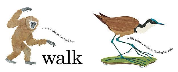 Move walk opt.JPG