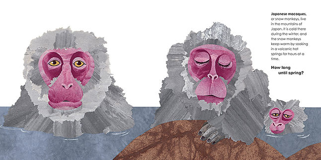 bath_monkeys opt.JPG