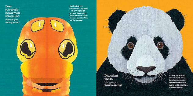 Creature Features panda opt.JPG
