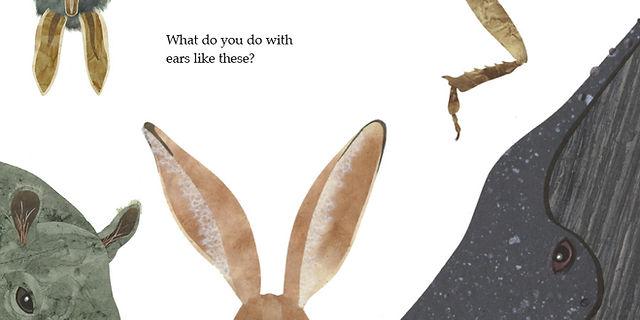 tail ears_1 opt.JPG