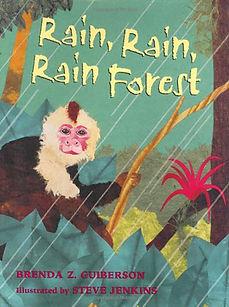 rain rain rainforest.jpg