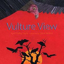 vulture view.jpg