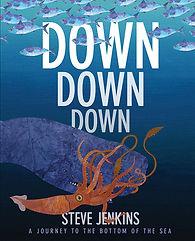 Down_Cov. opt.JPG