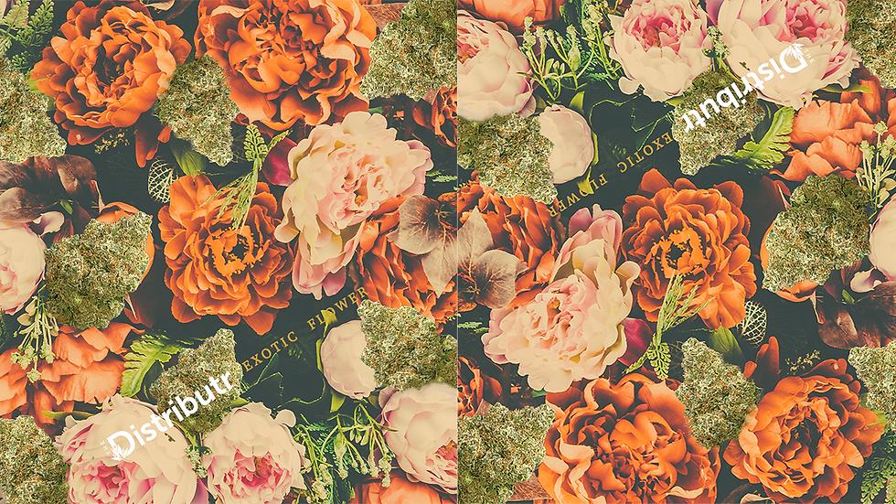 Web Floral.png