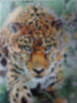 DSC00419 - Jaguar.JPG