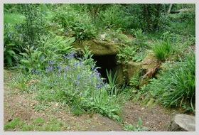 Rosemerryn Wood - Fogou 2