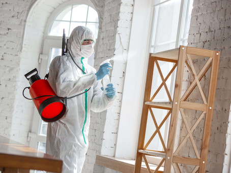 Benefits of Hiring Pest Control Companies In San Diego