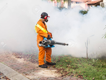 Do's And Don't For Hiring The Best Pest Control In San Diego