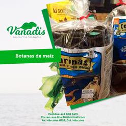 06-FB-Vanadis.png