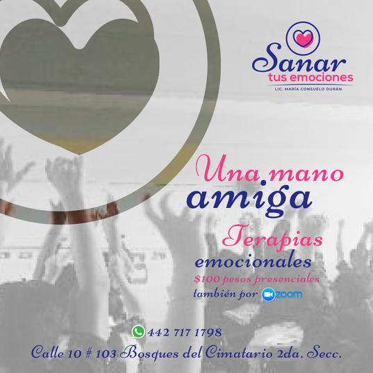 06-FB-Sanar-Tus-Emociones).png